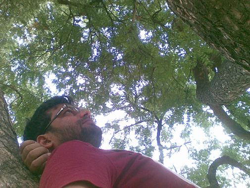इस बार गांव प्रवास के दौरान पेड़ पर सोने का सुख जिया. बचपन में अमरुद - कटहल - आम के छोटे पर उम्रदराज पेड़ों पर अक्सर सो जाया करता था. जब काफी दिनों बाद आप ऐसी जगह पर हों जहां से आपके बचपन की यादें जुड़ीं हों तो अचानक इतिहास खुद को दोहराता हुआ प्रतीत होता है.